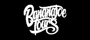 logo-bananajoe